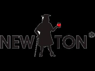 Логотип New Ton